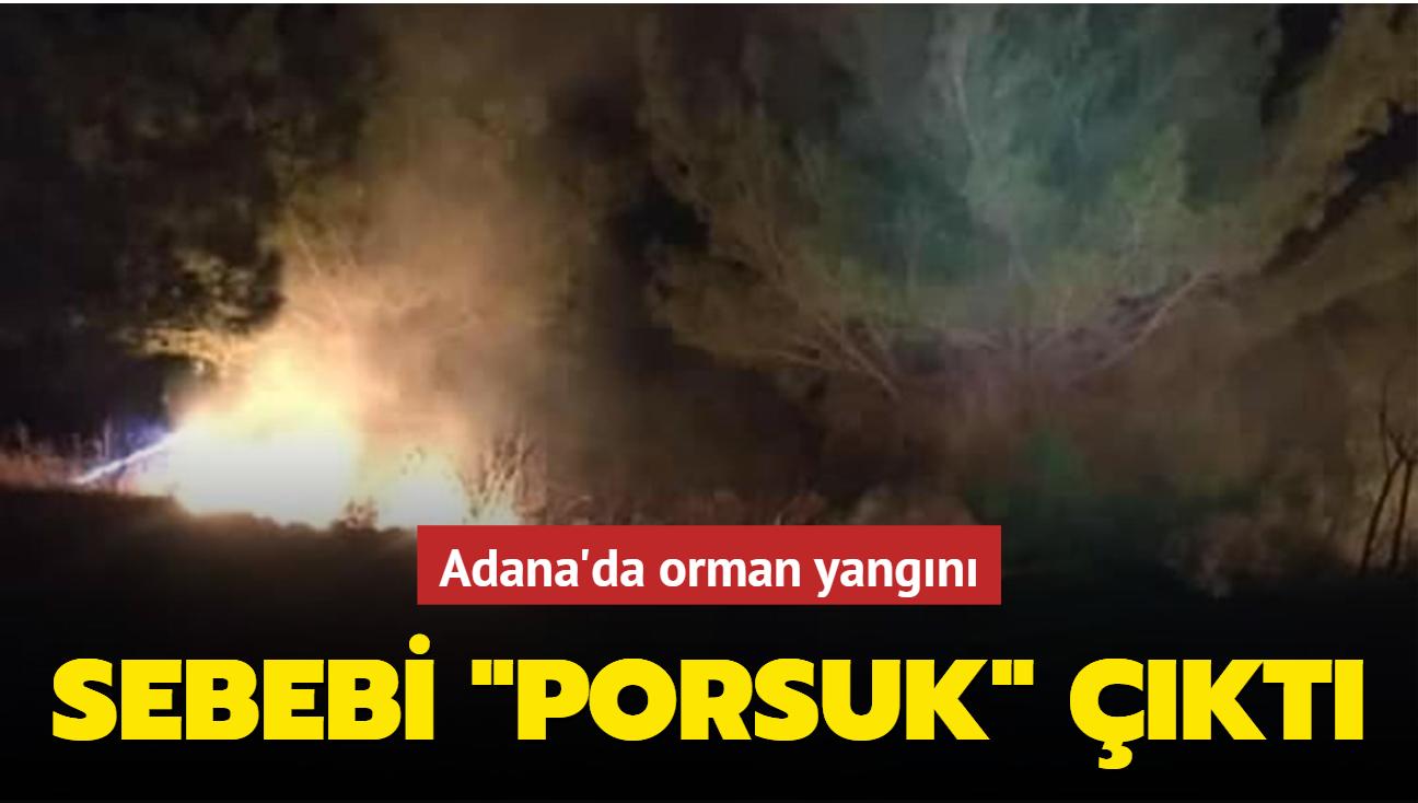 """Adana'da orman yangını... Sebebi """"porsuk"""" çıktı"""