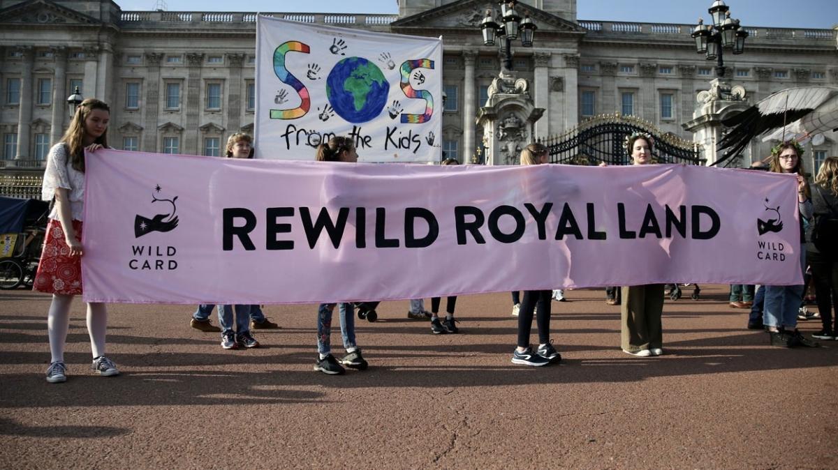 Çocuklardan İngiliz kraliyetine çağrı: Elinizdeki arazileri doğaya kazandırın