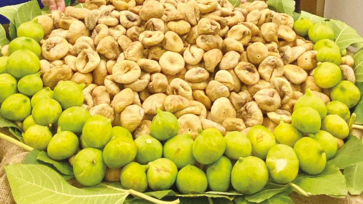 114 ülkeye kuru incir ihraç ettik