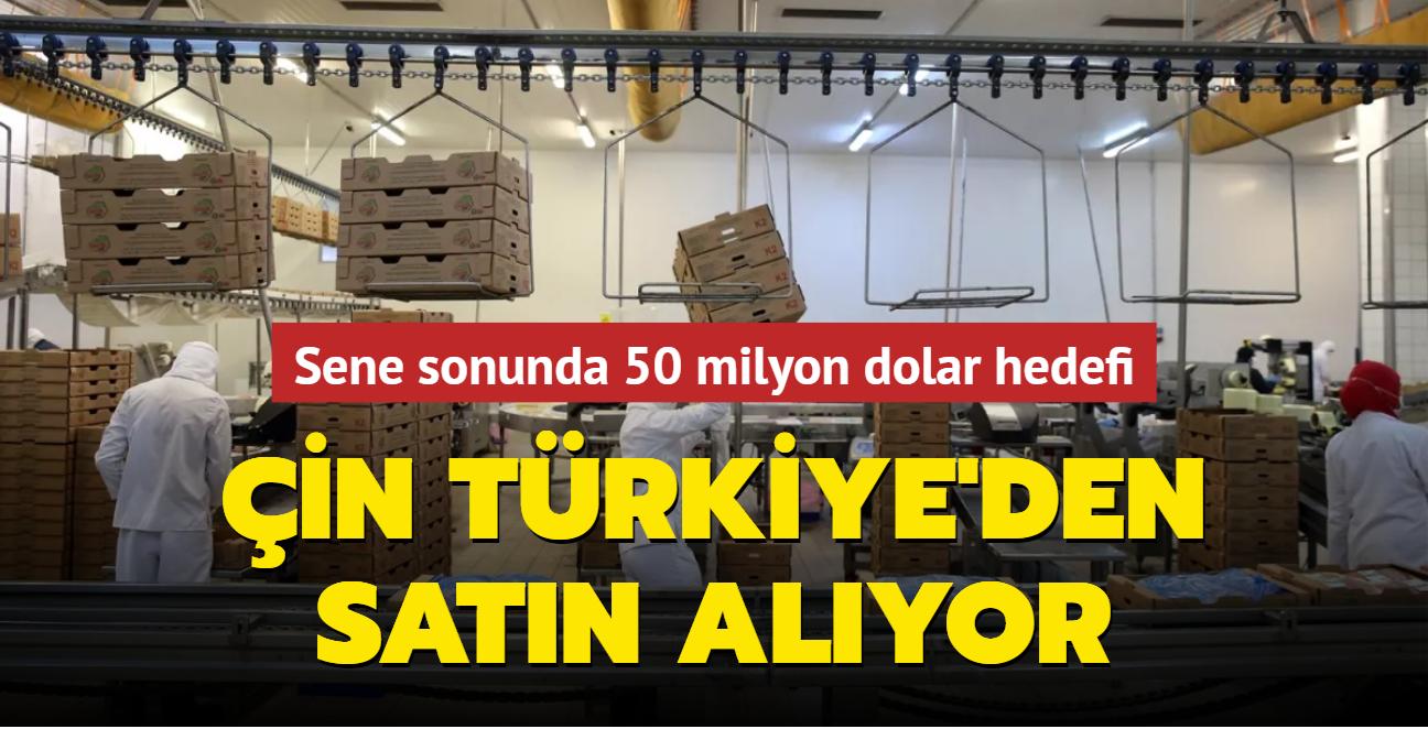 Çin Türkiye'den satın alıyor... Sene sonunda 50 milyon dolar hedefi