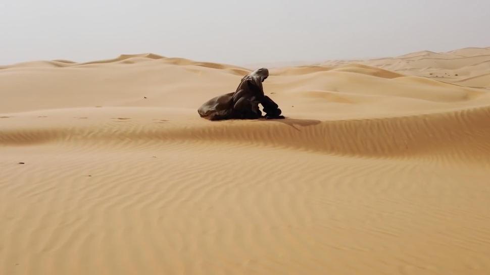 Modern bir başyapıt mı geliyor?  Dune: Çöl Gezegeni  22 Ekim'de gösterime girecek