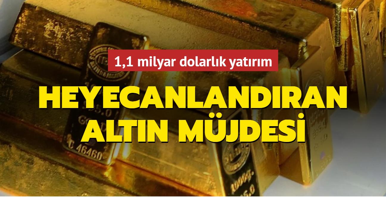 1,1 milyar dolarlık yatırım... Türkiye'den heyecanlandıran altın müjdesi