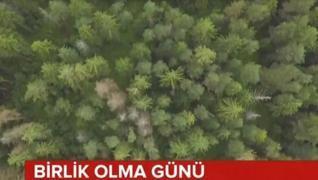 <p>AK Parti İstanbul İl Başkanı Osman Nuri Kabaktepe, Türkiye'de birçok noktada mücadele edilen orma