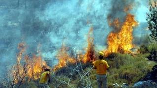 <p>Orman yangınlarında 7. gün. Muğla Milas, Bodrum, Antalya'nın Gündoğmuş ve Manavgat ilçelerinde, a