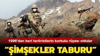 96'dan beri teröristler köşe bucak kaçıyor: 'Şimşekler Taburu'