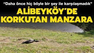 Alibeyköy'de korkutan manzara: 'Daha önce hiç böyle bir şey ile karşılaşmadık'