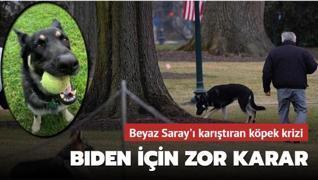 Beyaz Saray'ı karıştıran köpek krizi: Biden için zor karar