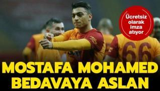 Mostafa Mohamed bedavaya Aslan