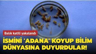 Balık katili yakalandı... İsmini dünyaya 'Adana' olarak duyurdular