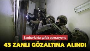 Şanlıurfa'da şafak operasyonu: 43 gözaltı