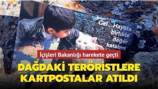 Dağdaki teröristlere 10 bin kartpostal atıldı