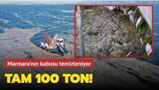 İzmit Körfezi'nde yapılan çalışmalarda 100 ton salya temizlendi