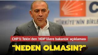 CHP'li Tekin'den HDP'ye 'bakanlık' desteği... 'Neden olmasın?'