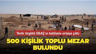 Terör örgütü DEAŞ'ın katliamı ortaya çıktı... 500 kişilik toplu mezar bulundu