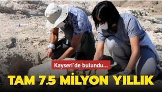 Kayseri'de bulundu... Tam 7.5 milyon yıllık