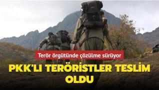 Terör örgütünde çözülme sürüyor... 5 terörist daha teslim oldu