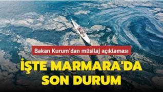 Marmara Denizi'nden 406 metreküp müsilaj temizlendi