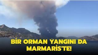 Son dakika haberi... Bir orman yangını da Marmaris'te çıktı! Bakan Pakdemirli'den ilk açıklama