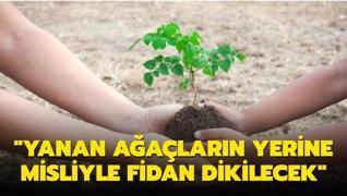 Bakan Pakdemirli: 'Yanan ağaçların yerine misliyle fidan dikilecek'