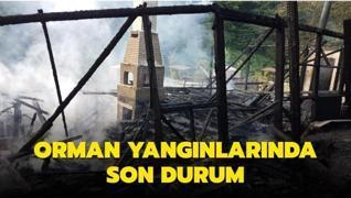 Orman yangınlarında son durum: 63 yangının 57'si kontrol altına alındı