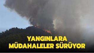Türkiye'deki yangınlara müdahale ediliyor