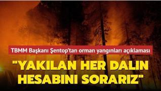 TBMM Başkanı Şentop'tan orman yangınlarına ilişkin açıklama: Yakılan her dalın hesabını sorarız