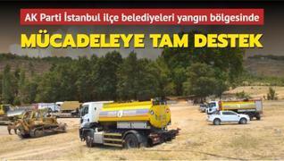AK Parti İstanbul ilçe belediyelerinden orman yangınlarıyla mücadeleye tam destek