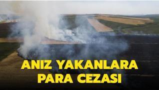 Edirne'de anız yaptırımı... Dönüm başına 80 lira para cezası