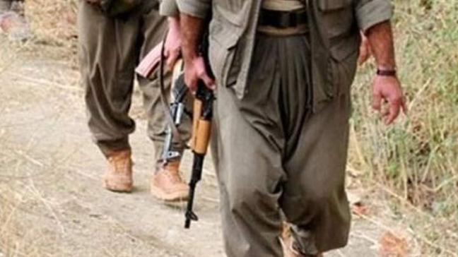 Şırnak'ta 8 PKK'lı güvenlik güçlerine teslim oldu!