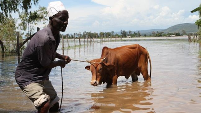Kenya'da seller 3 binden fazla kişiyi evinden etti