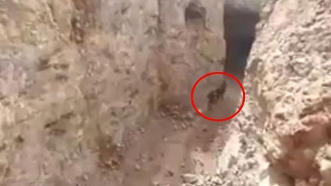 Abdullah Ağar Afrin'den 'pes' dedirten görüntüleri paylaştı