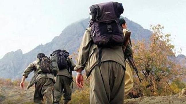 PKK'nın sözde 'Nazımiye Gücü Sorumlusu' ve gri listedeki 'Baran' kod adlı terörist öldürüldü