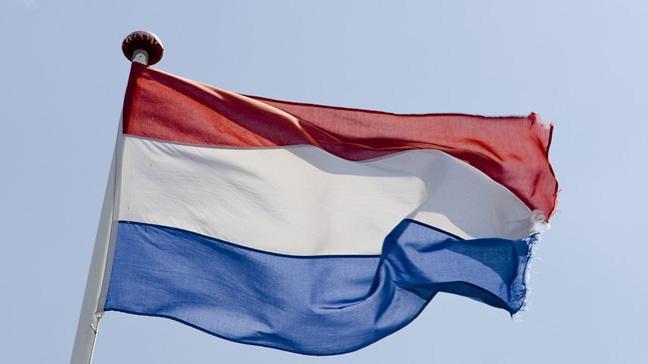 Hollanda'da emlak büroları ayrımcılık yapıyor