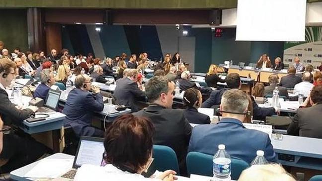 Avrupa Konseyinde terör destekçisi Leyla İmret'e konuşma izni verdiler