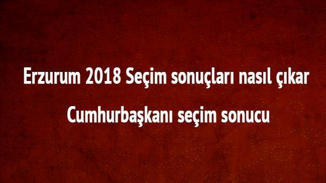 Erzurum 24 Haziran 2018 seçim sonuçları oy oranları Erzurum cumhurbaşkanı seçim sonucu