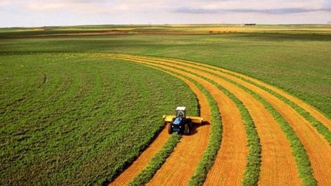 Hazineye ait tarım arazileri 10 yıla kadar doğrudan kiralanabilecek
