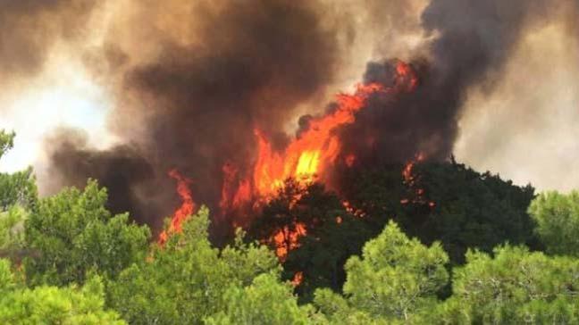 Operasyonların sürdüğü Bermize bölgesinde çıkan ot yangını hızla ilerliyor