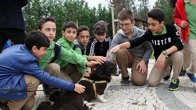 """İBB, """"bahçemde sevgi"""" projesiyle çocuklara sokak hayvanları bakımı eğitimi veriyor"""