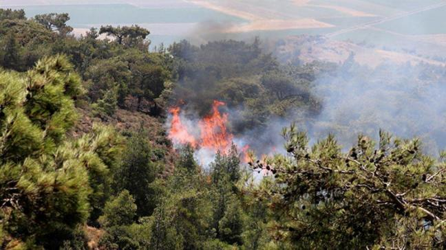 Terör örgütü PKK orman yakıp şantiyelere saldırdı