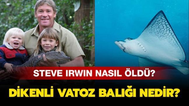 """Steve Irwin hayatını nasıl neden kaybetti"""" Dikenli vatoz balığı nedir"""""""