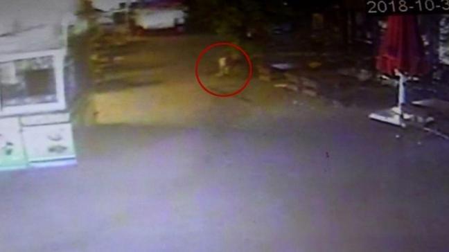 Aydın'da mağaza önünde cenin bulunmasıyla ilgili iki şüpheli gözaltına alındı
