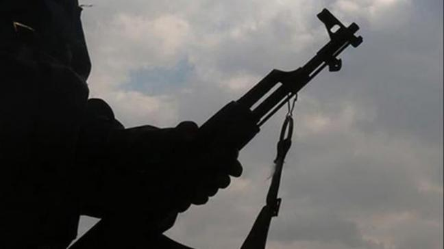 İçişleri Bakanlığı: Van'da bir terörist silahıyla birlikte sağ yakalandı