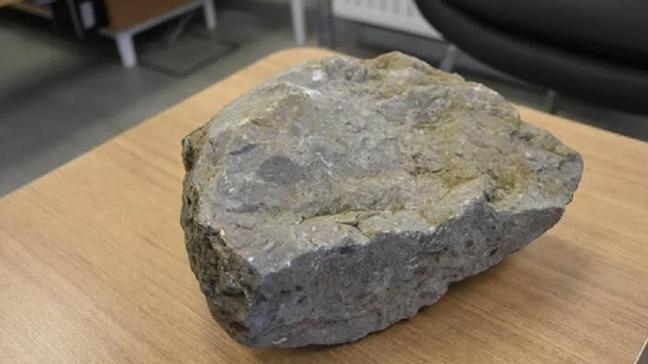Tam 40 milyon yıllık... Şırnak'ta bulundu!