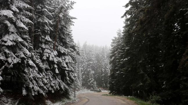 Mayıs ayında yağan kar şaşkınlık yarattı. Ilgaz Dağı beyaza büründü