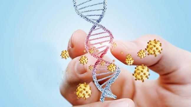 """Koronavirüsün farklı etkilerinde genetiğin rolü var mı"""""""