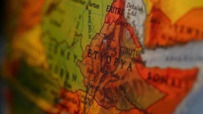 Etiyopya'da seçim krizi: Meclis başkanı istifa etti