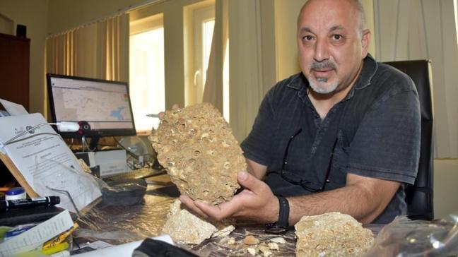 Muş'ta heyecanlandıran keşif! Tam 50 milyon yıllık