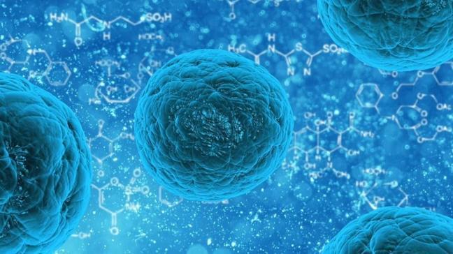 Japon bilim insanları keşfetti: Uzayda 3 yıl yaşayabilen bakteri