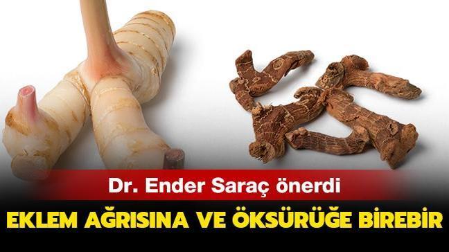Dr. Ender Saraç'tan havlıcan önerisi! Eklem ağrılarına ve öksürüğe doğal ilaç
