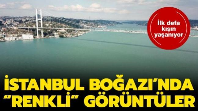 """İlk defa kışın yaşanıyor: İstanbul Boğazı'nda """"renkli"""" görüntüler"""